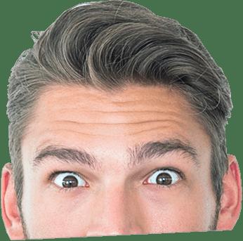 home webmaster header head - ראשי חדש